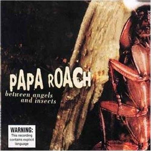 between angels and insects Papa roach - between angels and insects - tekst piosenki, tłumaczenie piosenki  i teledysk znajdź teksty piosenki oraz tłumaczenia piosenek i zobacz teledyski.