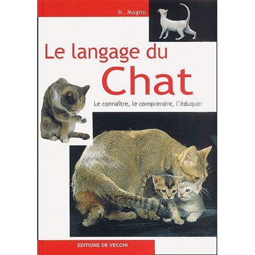 magno chat