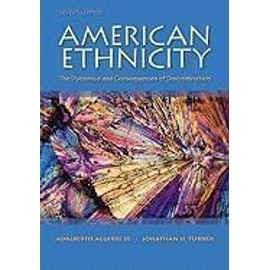 American Ethnicity: The Dynamics And Consequences Of Discrimination de Collectif