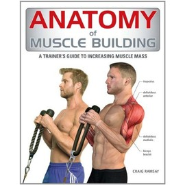 Anatomy Of Muscle Building: A Trainer's Guide To Increasing Muscle Mass de Craig Ramsay