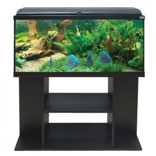 aquarium aquadream 100 noir meuble aquatlantis achat et vente. Black Bedroom Furniture Sets. Home Design Ideas