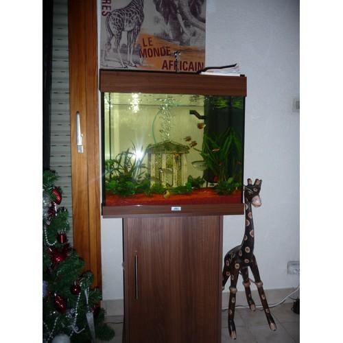 aquarium carr 120l meuble et accessoires pas cher priceminister. Black Bedroom Furniture Sets. Home Design Ideas