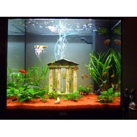 Aquarium carr 120l meuble et accessoires achat et vente for Accessoire aquarium