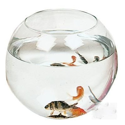 aquarium rond boule verre 20x16cm poissons rouge achat et vente. Black Bedroom Furniture Sets. Home Design Ideas