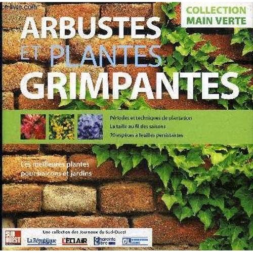 Arbustes Et Plantes Grimpantes Les Meilleures Plantes Pour Balcons