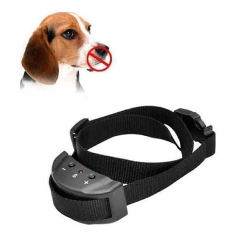 canava collier anti aboiement electrique pour chien. Black Bedroom Furniture Sets. Home Design Ideas