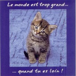 Google image  - Page 6 Carte-postale-chaton-avec-message-enveloppe-ivoire-cartes-postales-858307894_ML