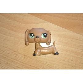 chien petshop race teckel marron clair aux yeux verts petits points noirs sur les oreilles. Black Bedroom Furniture Sets. Home Design Ideas