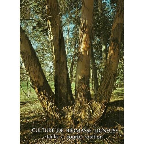 collectif-culture-de-biomasse-ligneuse-taillis-a-courte-rotation-livre-851263626 L.jpg 092b01195d3