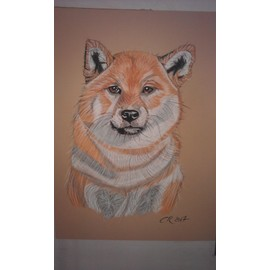 Dessin d 39 un chien shiba inu achat vente neuf occasion rakuten - Dessin d un chien ...