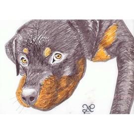Dessin chien mignon feutres promarker p72 neuf et d 39 occasion - Dessin chien mignon ...