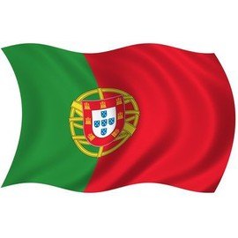 Drapeau portugais portugal 90 x 150 cm 100 polyester airsoft for Piscine coque polyester portugal