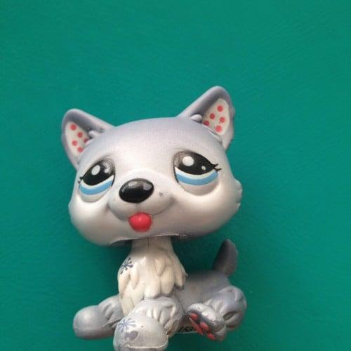 Figurine chien husky petshop littlest pet shop n 1617 - Chien pet shop ...