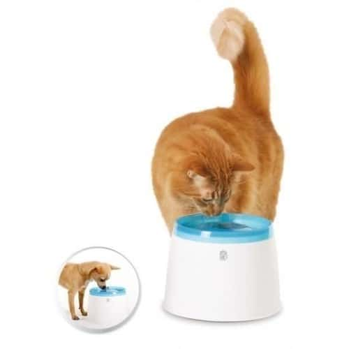 fontaine a eau compacte pour chat 2 l achat et vente. Black Bedroom Furniture Sets. Home Design Ideas