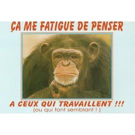 Pensée du jour Humour-singe-ca-me-fatigue-de-penser-a-ceux-qui-travaillent-ou-qui-font-semblant-cartes-postales-870162613_ML