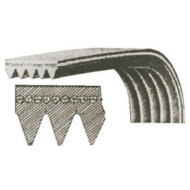 hutchinson poly v 1250 j ma sbr cr courroie pour lave. Black Bedroom Furniture Sets. Home Design Ideas
