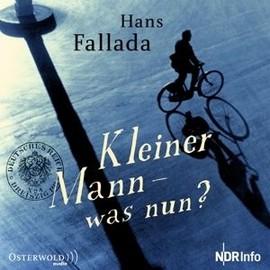 Kleiner Mann - Was Nun? de Hans Fallada