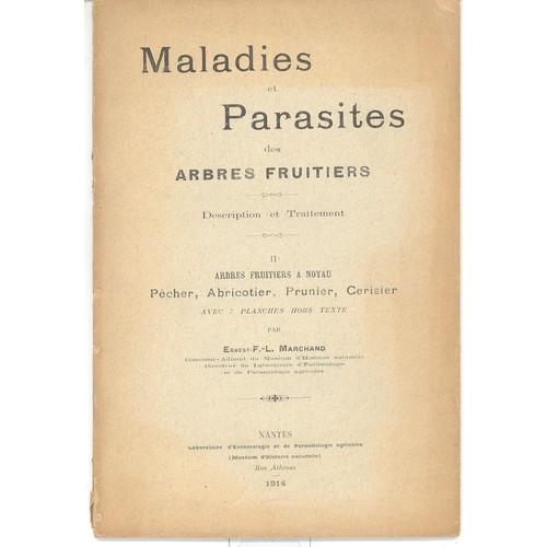 Maladies et parasites des arbres fruitiers description et traitement ii arbres fruitiers - Traitement arbres fruitiers ...