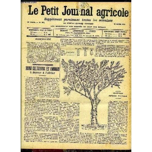 Le petit journal agricole n 915 soins culturaux et engrais donner l 39 olivier h l alph - Engrais pour olivier ...