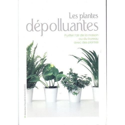 les plantes d polluantes purifier l 39 air de la maison ou du bureau avec des plantes de. Black Bedroom Furniture Sets. Home Design Ideas