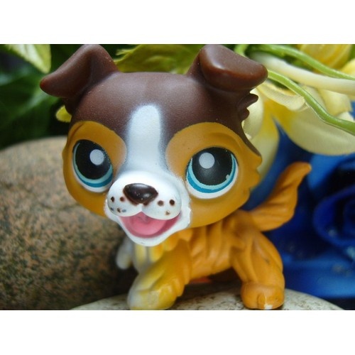 Littlest pet shop petshop chien colley 237 achat et vente - Chien pet shop ...