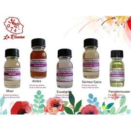 Lot De 5 D'extrait De Parfum Musc/Ambre/Eucalyptus/Senteur Epice/Pamplemousse