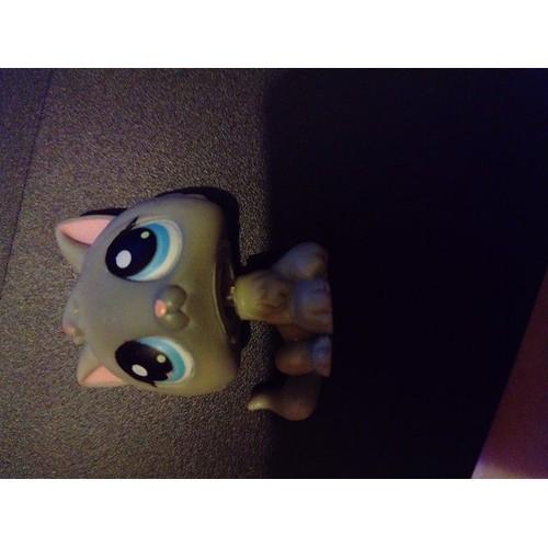 Lps littlest petshop pet shop baby cat b b chat chaton 66 - Petshop chaton ...