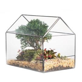 Maison Forme Verre Geometrique Terrarium Cote Ouvert Pour Cactus