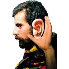 Petite annonce Paire D'oreilles Géantes - 49000 ANGERS