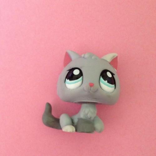 Petshop 1301 chat chaton gris achat vente de jouet - Petshop chaton ...