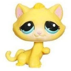 Petshop chat chaton caramel orang pet shop 1035 - Petshop chaton ...