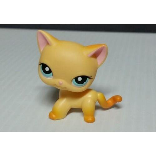 petshop chat europeen lps 339 achat vente de jouet rakuten