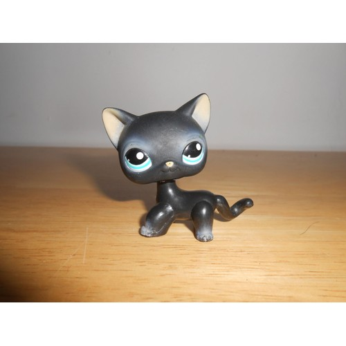 petshop chat europeen noir n 994 achat vente de jouet rakuten