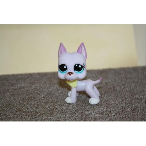 Petshop chien grand danois n 1022 achat vente de jouet rakuten - Grand petshop ...