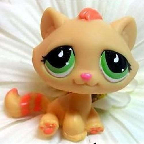 Petshop le petit chaton caramel orange yx verts pet - Petshop chaton ...