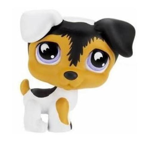 Petshop petit chien russel blanc noir caramel pet shop 803 - Chien pet shop ...