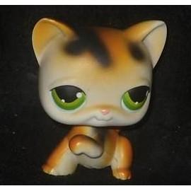 Petshop rare chaton blanc roux noir pet shop 27 achat - Petshop chaton ...