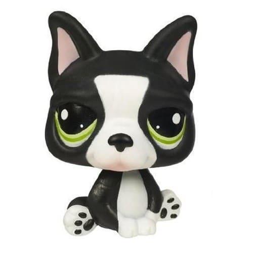 Petshop sp cial dition chien boston terrier noir blanc - Chien pet shop ...