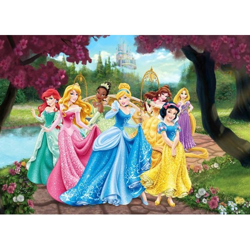 poster xxl ch teau princesse disney 160x115 cm enfants pas cher. Black Bedroom Furniture Sets. Home Design Ideas