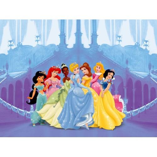 Princesses Disney Chateau Maxi Papier Peint Decoration Murale