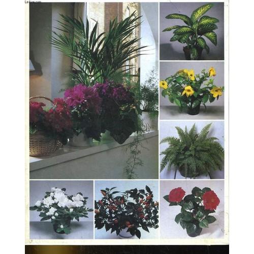 soins et beaute des plantes livre achat vente neuf occasion. Black Bedroom Furniture Sets. Home Design Ideas