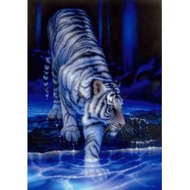 tableau sous verre 21 x 29 7 tigre blanc neuf et d 39 occasion. Black Bedroom Furniture Sets. Home Design Ideas