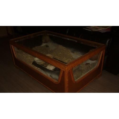 vend table terrarium pas cher achat vente priceminister. Black Bedroom Furniture Sets. Home Design Ideas