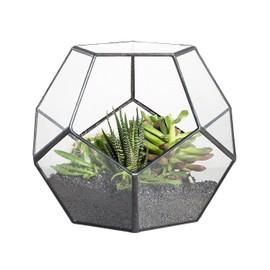 Verre Noir Pentagone Geometrique Terrarium Conteneur Fenetre Sill